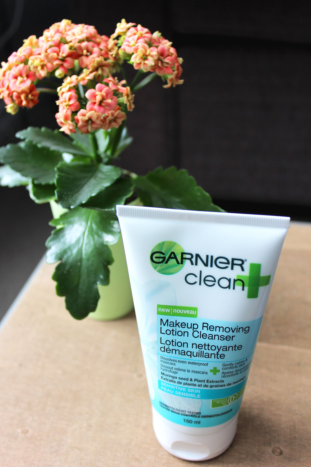 Garnier Clean Plus - Product Review