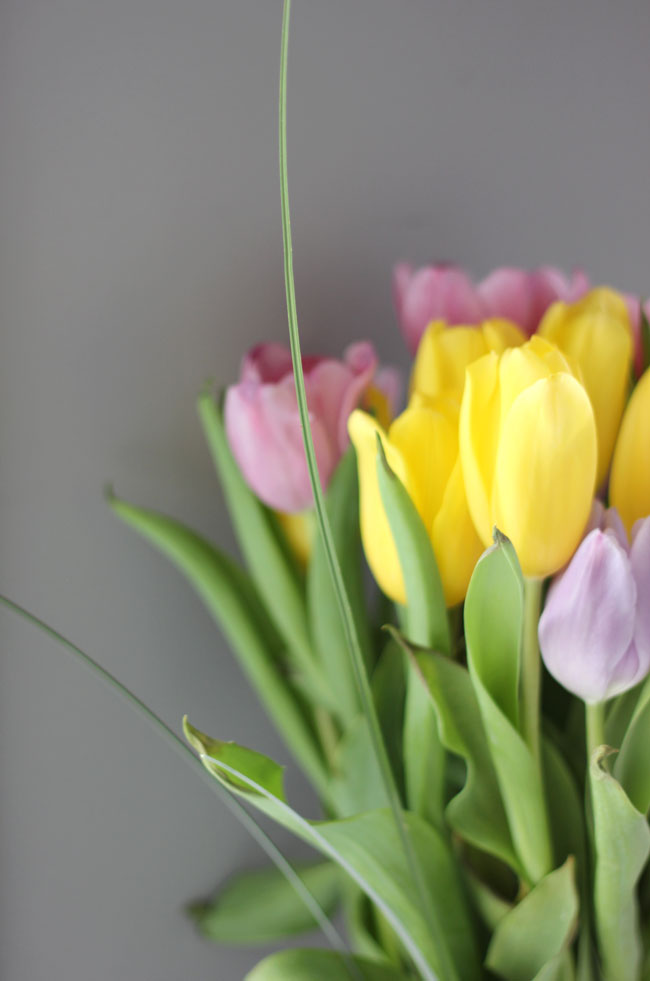 Fresh Flowers at your office - increased productivity