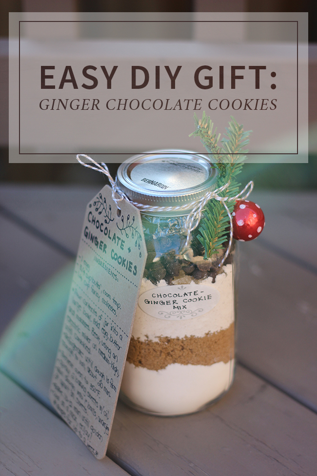 Easy DIY Gift Idea - Ginger Chocolate Cookies