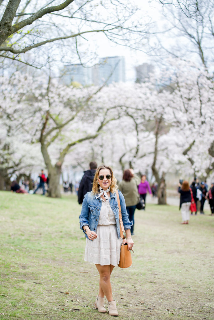 Enjoying the cherry blossoms at High Park in Toronto, wearing a Hudson Jeans denim jacket with a dress from Aritzia