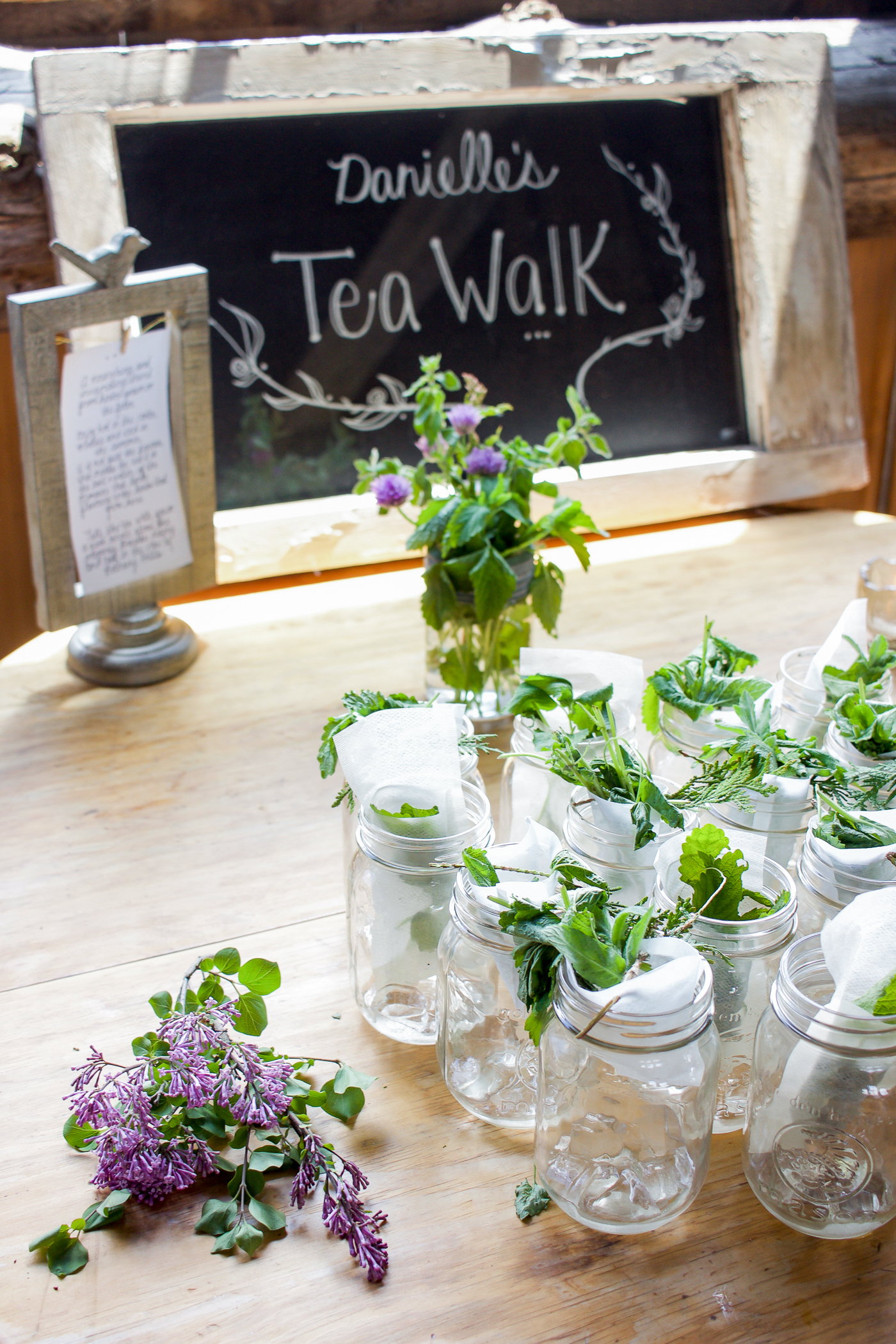 the tea walk at south pond farms