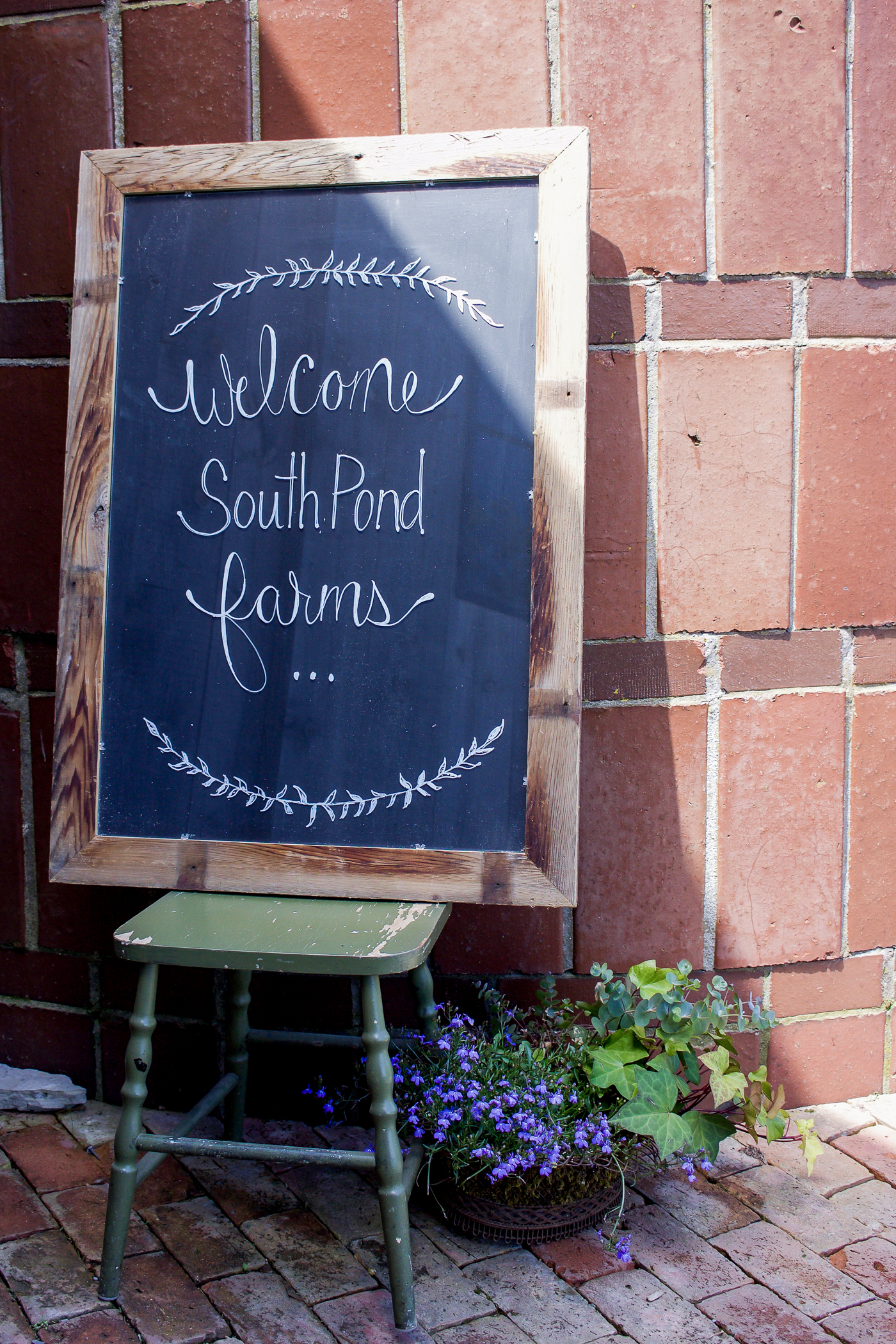 Hand-written chalkboard sign, welcoming the media to South Pond Farms