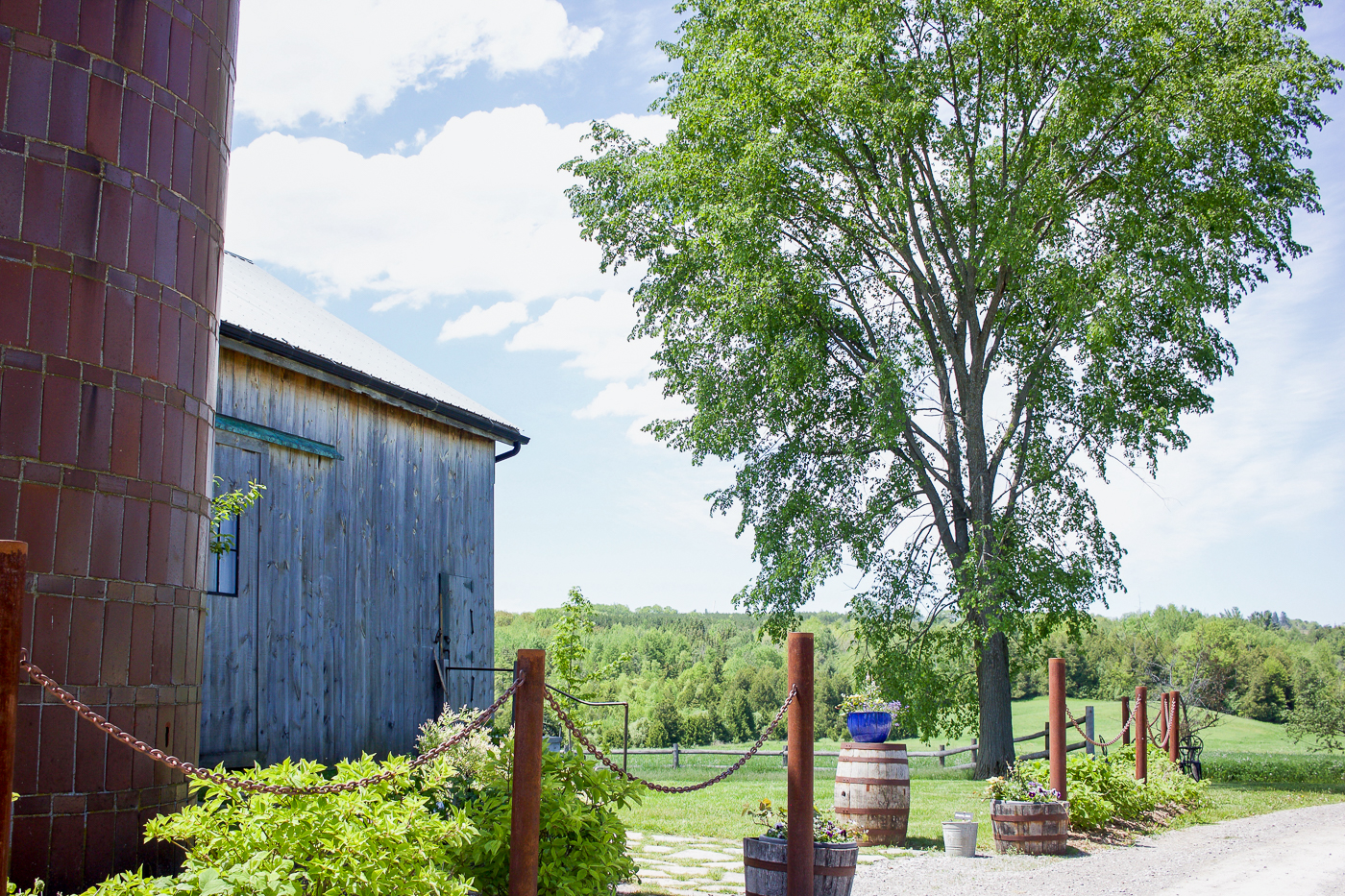 the barn and property at south pond farms, in p