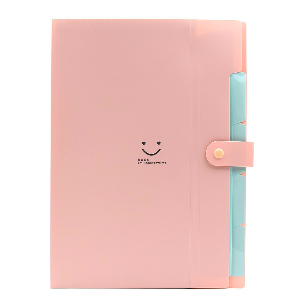 Letter expanding file folder accordion document holder organizer in pink