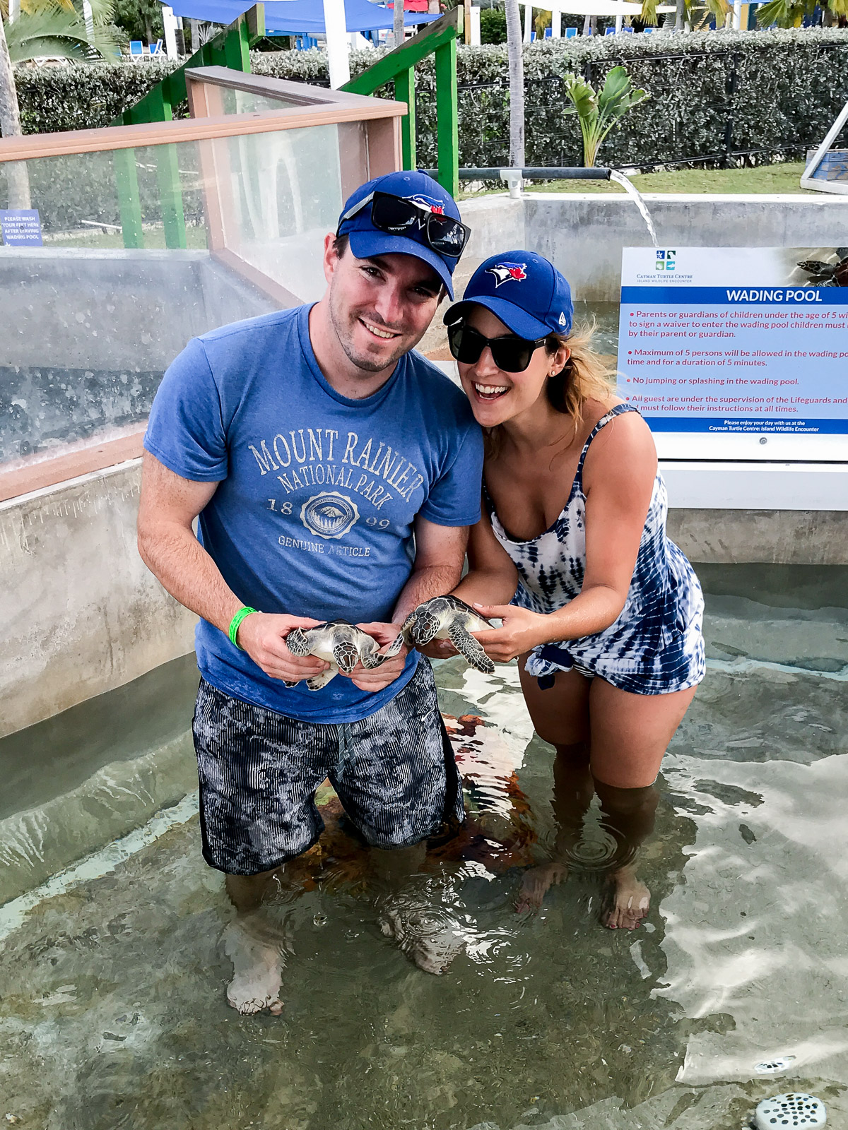 At the turtle farm in the cayman islands