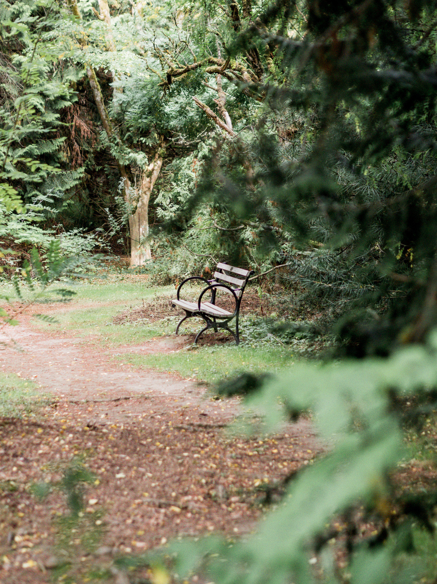 Exploring the local parks in and around Seattle, Washington