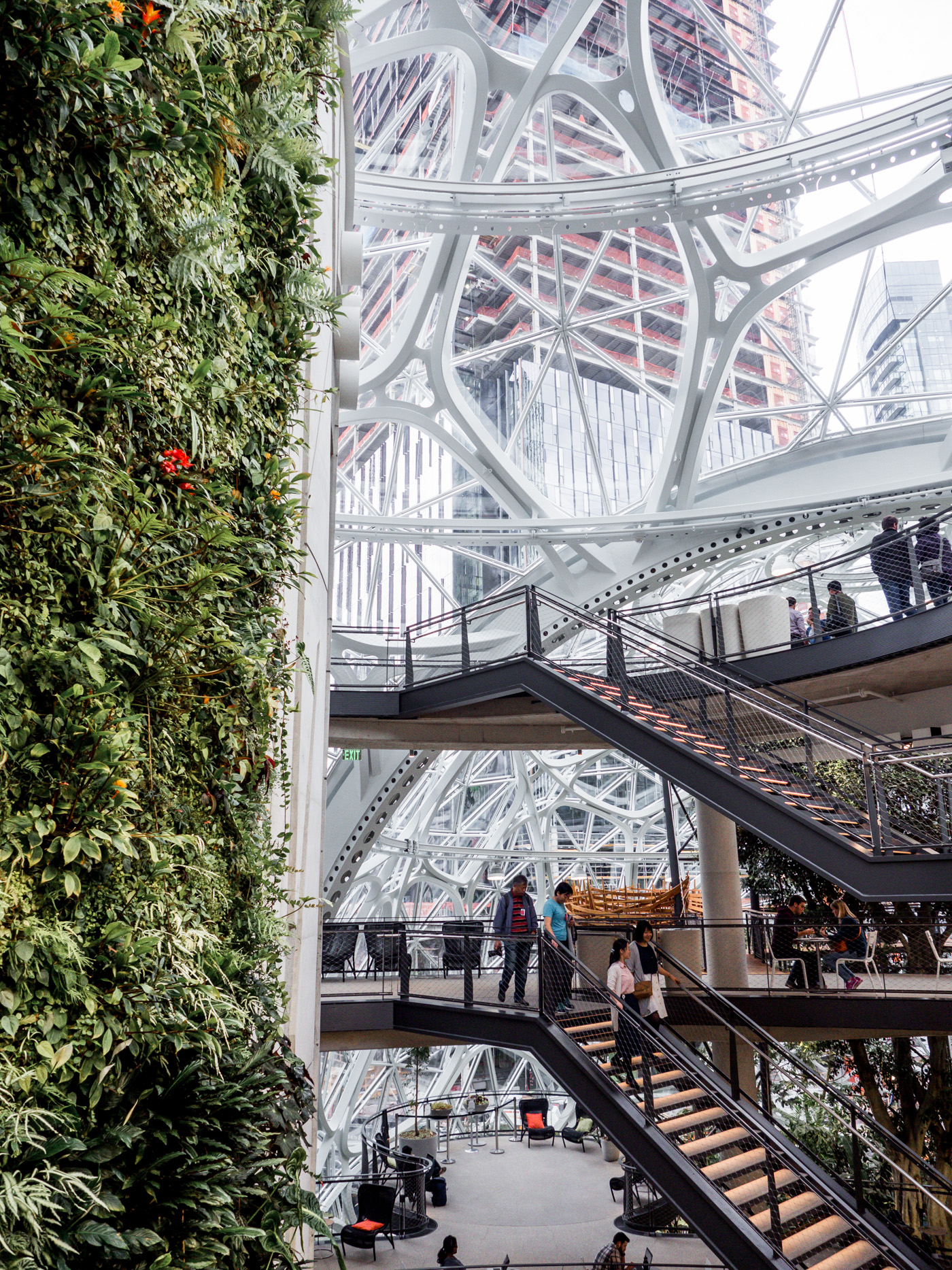 Inside look at the Amazon spheres in Seattle