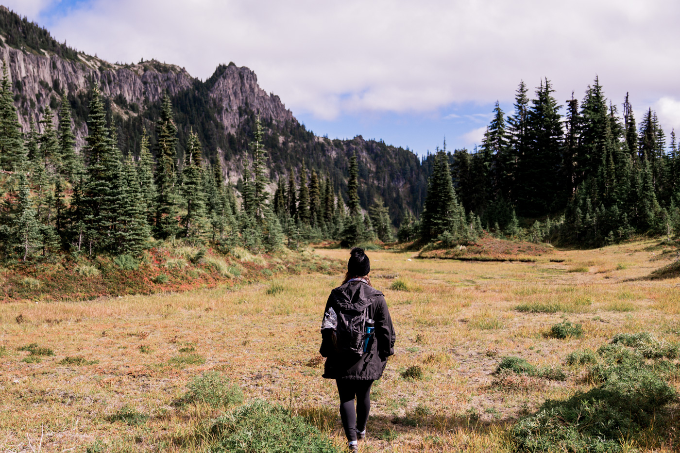 hiking in mount rainier national park, near seattle